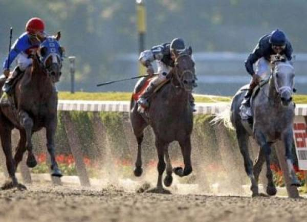 2009 Breeders Cup Betting