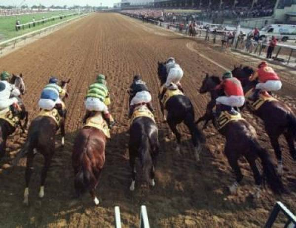 2010 Preakness Stakes Odds