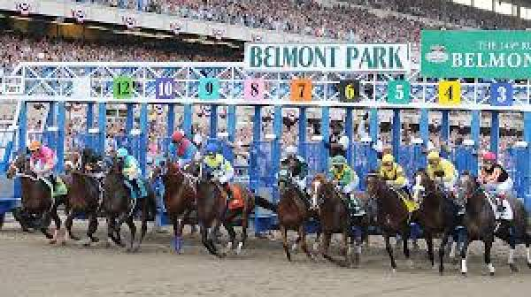 2013 Belmont Stakes Betting Odds