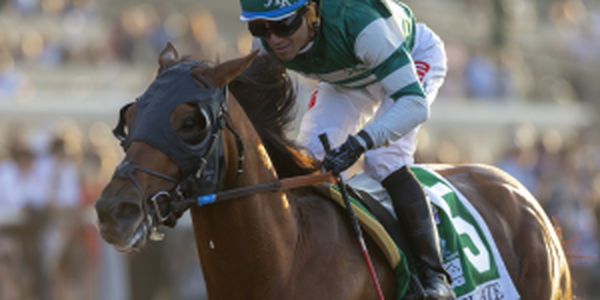 Accelerate Payout Odds 2018 Breeders Cup Classic