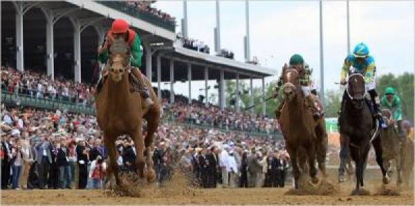 Animal Kingdom Odds of Winning Belmont Stakes