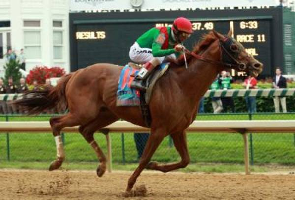 Animal Kingdom Odds to Win Triple Crown