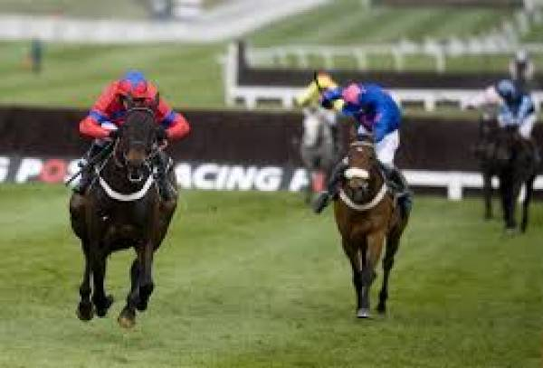 2019 Arkle Challenge Trophy Betting Odds, Tips: Cheltenham Festival