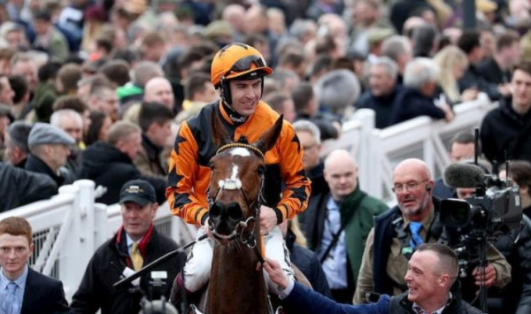 Bet The Arkle Challenge Trophy Novices' Chase 2021 Online Outside the UK