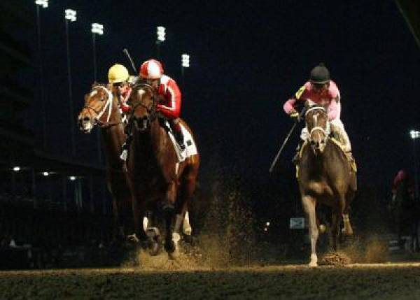 Astrology Odds to Win the 2011 Preakness Stakes
