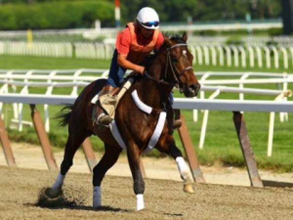 Atigun, Paynter, Street Life Odds to Win 2012 Belmont Stakes