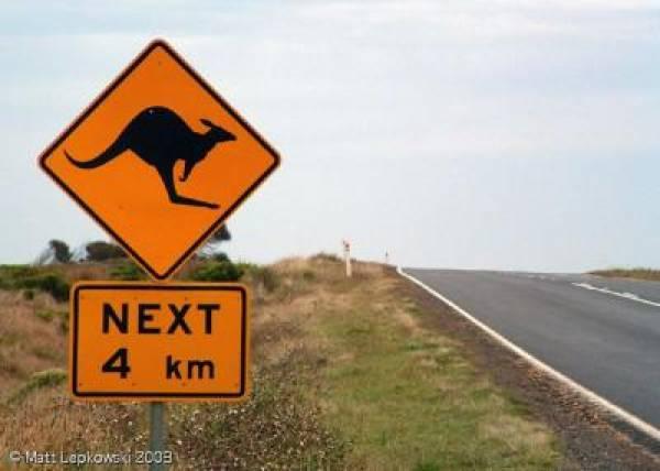 Aussie Millions Winner