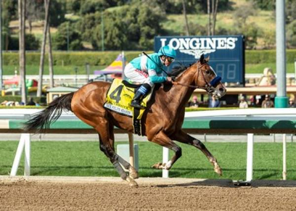 Authentic Payout Odds to Win Breeders Cup Classic