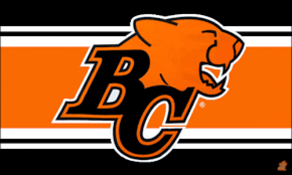 BC Lions Huge Odds Shift to Win 2017 CFL West: Betting Preview