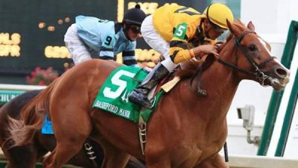 Backtalk 2010 Kentucky Derby Odds
