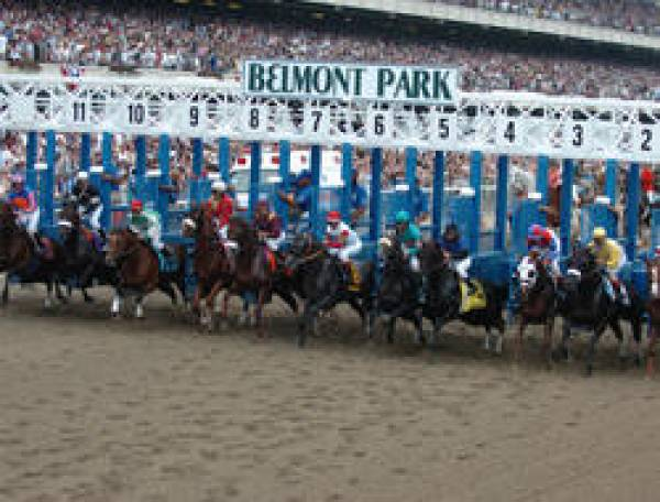 2010 Belmont Stakes Odds