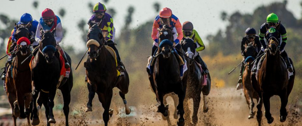 Horse Racing Odds – 2021 Belmont Stakes Longshots