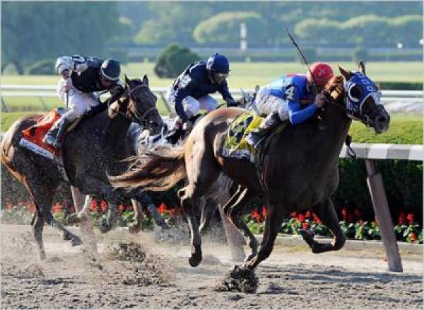 Belmont Stakes 2010