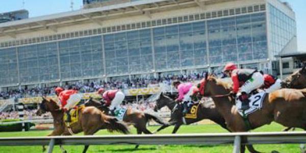 Belmont Stakes- Triple Crown Final Race Betting Preview 2019