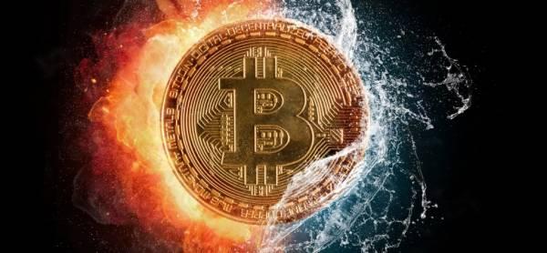 Bitcoin Bookie Maine
