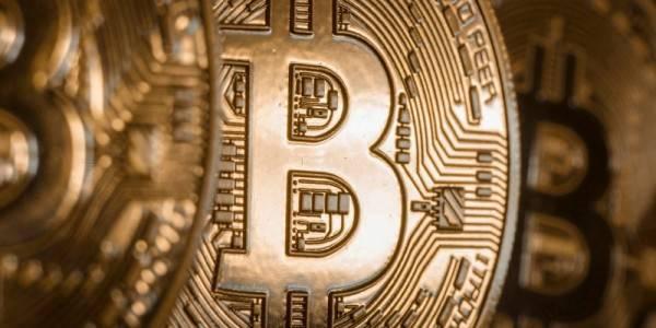 Bitcoin, Best Option, Online, Local Bookies