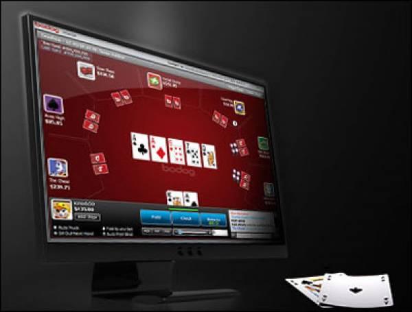 gambling911 bodog betting