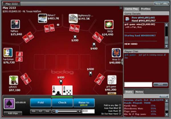 Gambling911 bodog betting cs go betting advice steam group pics
