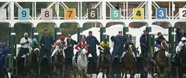 Breeders Cup 2011 Odds