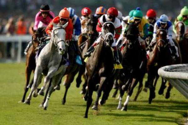 Betting on the Breeders Cup 2011