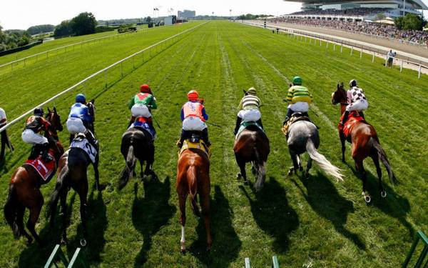 Next Generation in Sports Betting Software: The Breeders Cup