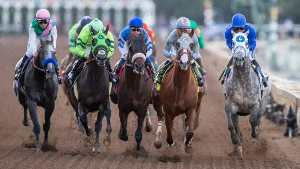 2018 Breeders Cup Juvenile Fillies Turf Odds To Win