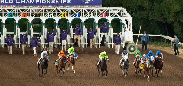 Breeders Cup 2017 Friday Betting Odds