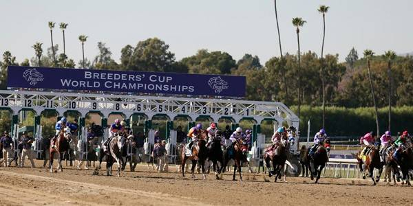 2016 Breeders Cup Classic Overnight Betting Odds