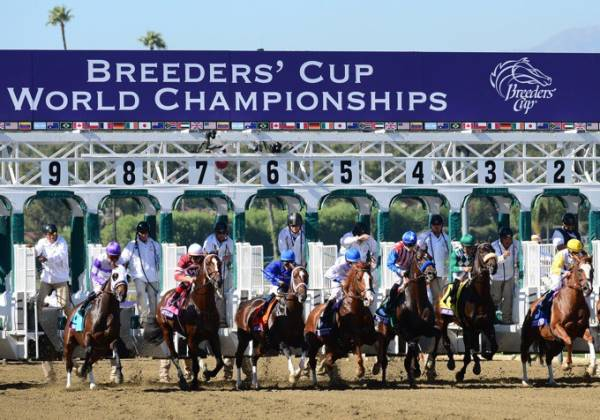 2019 Breeders Cup Betting News