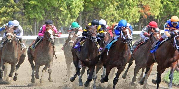 Breeders Cup Classic 2016 Betting Tips, Strategies, Picks