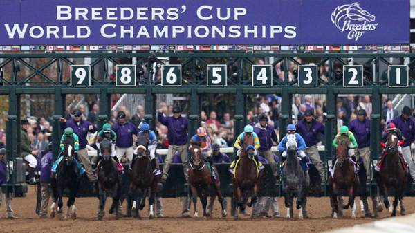 Breeders Cup Classic 2017 Updated Odds, Post Positions