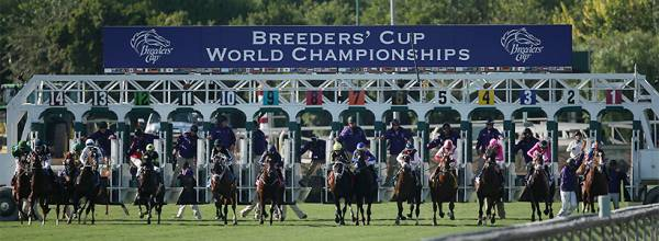 2017 Breeders Cup Classic Overnight Odds