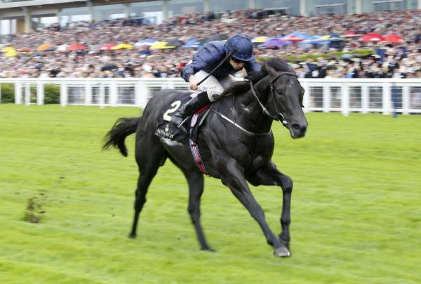 Caravaggio Odds to Win the Commonwealth Cup – Royal Ascot 2017