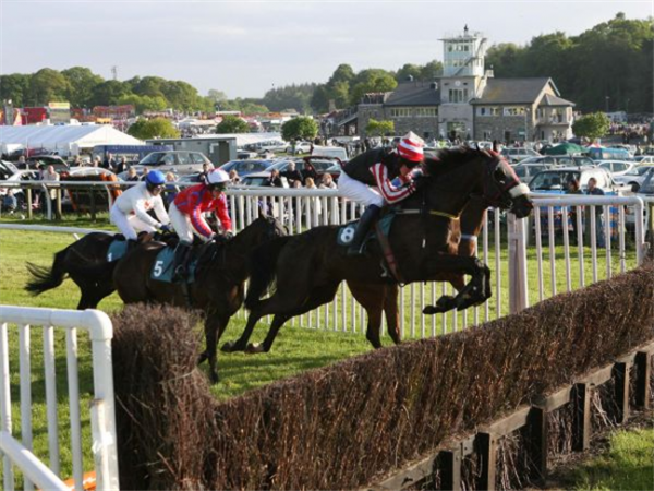 2017 Totepoolliveinfo.com Handicap Chase Betting Odds: Altruism Favorite
