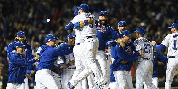 Cubs Fans Keep Vegas Bet Slips Instead of Cashing Out