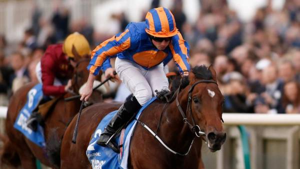 2000 Guineas Betting Odds – 2017: Churchill the Favorite