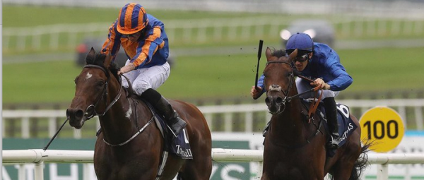 Churchill Wins Irish 2,000 Guineas at the Curragh at 1-3 Odds