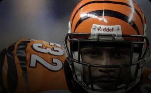 Cincinnati Bengals AFC North 2013 Odds