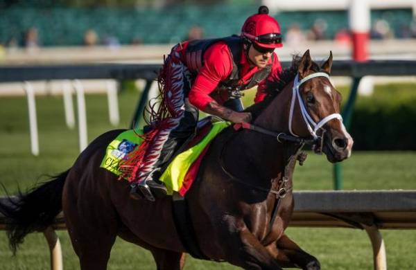 Classic Empire Odds of Winning Belmont Stakes – Payout Near 2-1