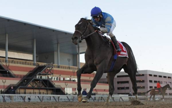 What Will the Payout Be If Cloud Computing Wins the Preakness Stakes?