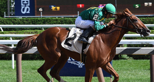 Code of Honor Breeders Cup Payout Odds