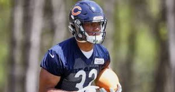 Fantasy Tip 2019: Chicago Bears - A Look at David Montgomery