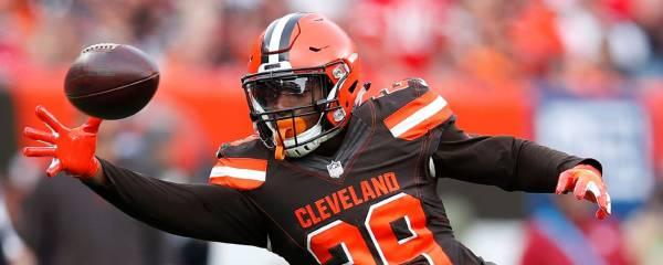 Duke Johnson Prop Bets 2019 - Touchdowns, Receptions, Rushing Yards, Receiving Yards