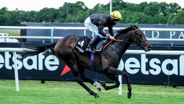 2020 Investec Derby Betting Odds
