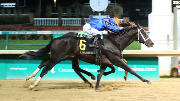 Enticed Payout Odds - 2018 Kentucky Derby