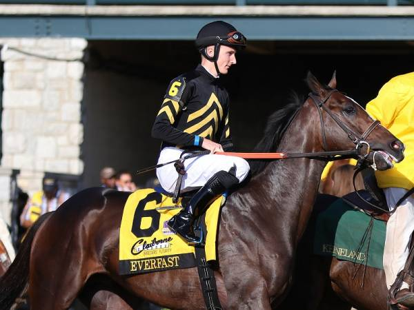 Everfast, Joevia, Tax Payout Odds to Win Belmont Stakes