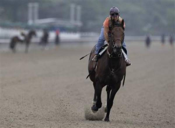 First Dude Belmont Stakes 2010 Odds