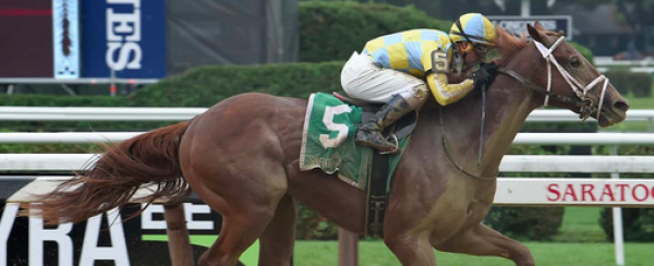 Flameaway Odds to Win the 2018 Kentucky Derby - 35-1
