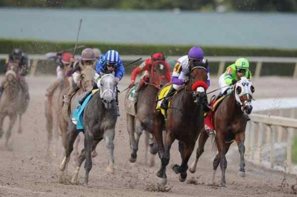 2018 Florida Derby Betting Odds