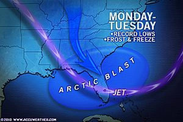 Arctic Cold East US